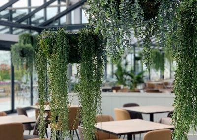 Beckworth Emporium – The Restaurant in the Glasshouse